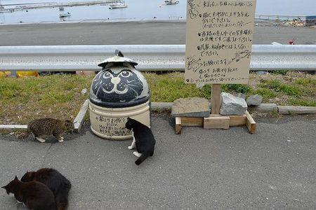 Tashirojima120318-33