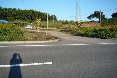 Nanndakore
