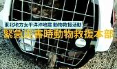 緊急災害時動物救援本部
