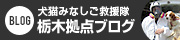 犬猫みなしご救援隊 栃木拠点ブログ